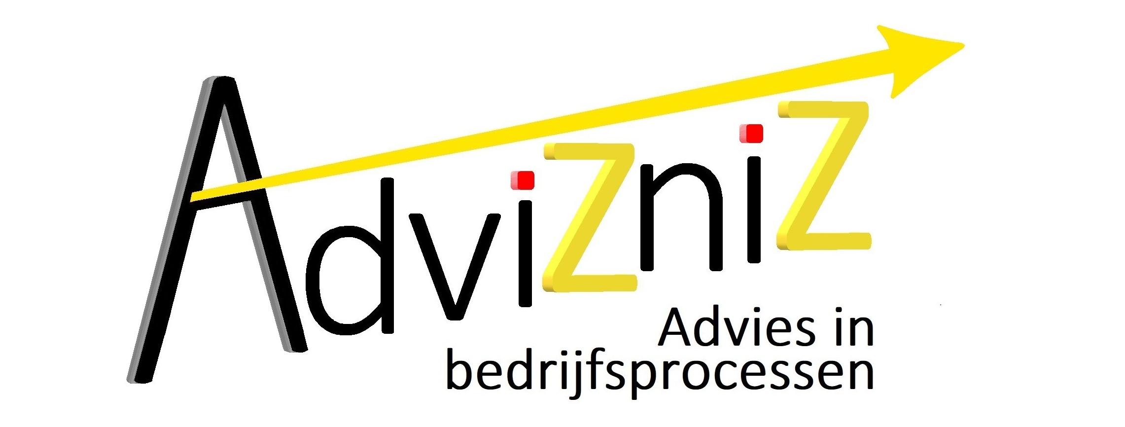 AdviZniZ : Advies in bedrijfsprocessen